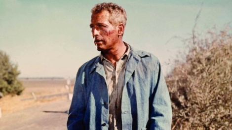 Cool Hand Luke. 'The man and the motion picture that simply do not conform'