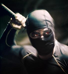 Ninja - post