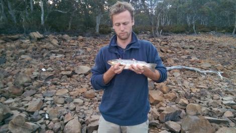 Jordan trout